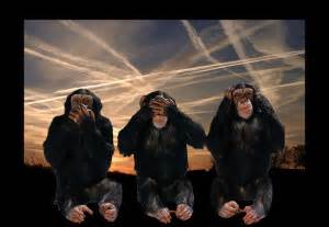 Chimps & Chemtrails