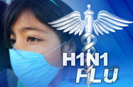How do i make a hook for an essay about the swine flu vaccine?