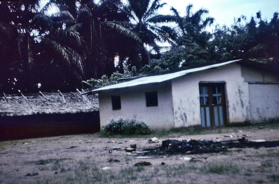 Ebola Origins