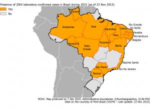 ZIka Virus spread Brazil