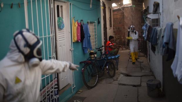 Zika Virus Brazil